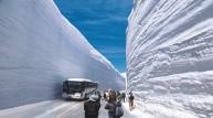 봄이면 열리는 거대한 설국(雪國) 판타지