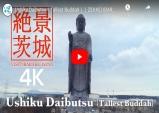 이바라키 랜선여행⑨-절경 이바라키! 세계 최고 청동입상 '우시쿠대불'