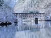 겨울이 매력적인 후쿠시마의 설경스폿 BEST 6