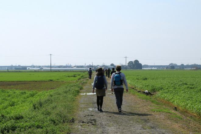 미야마_서브04(전원풍경).JPG