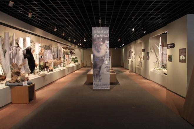 서브06-오오마치(산악박물관).jpg